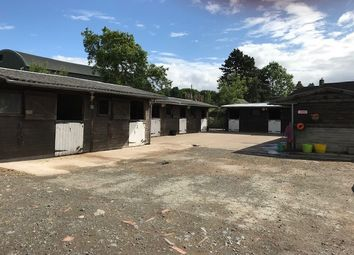 Thumbnail Land to rent in Ribbesford, Bewdley