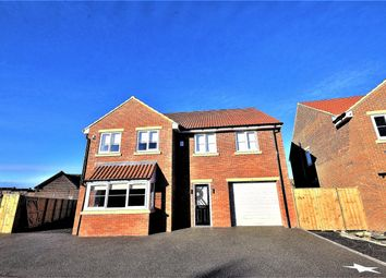 Thumbnail 4 bed detached house for sale in Kings Court, Horden, County Durham