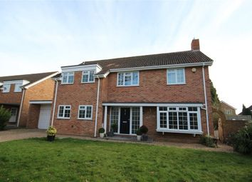 Thumbnail 4 bed detached house to rent in Denmark Avenue, Woodley, Reading