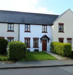Thumbnail 3 bed terraced house for sale in Bro'r Dderwen, Clynderwen, Pembrokeshire
