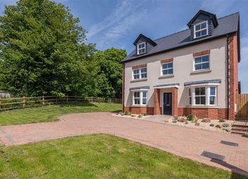 Thumbnail 5 bed detached house for sale in Birch Grove, Tutshill, Gloucestershire