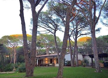 Thumbnail 5 bed villa for sale in Villa With Private Beach Access, Roccamare, Tuscany, Italy