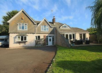 Thumbnail 4 bed detached house for sale in Garrow Close, Central Area, Brixham