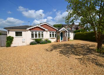 Thumbnail 4 bedroom detached bungalow for sale in Holly Drive, Old Basing, Basingstoke