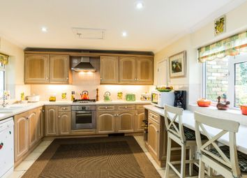 Thumbnail 4 bed detached house for sale in Lower Horsebridge, Hellingly, East Sussex