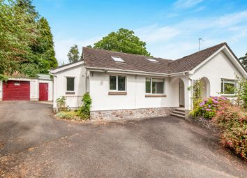 Thumbnail 3 bed detached bungalow for sale in Duckspond Road, Buckfastleigh