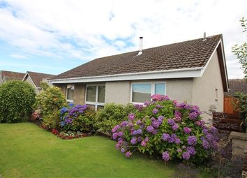 Thumbnail 3 bed detached bungalow for sale in Mannachie Road, Forres