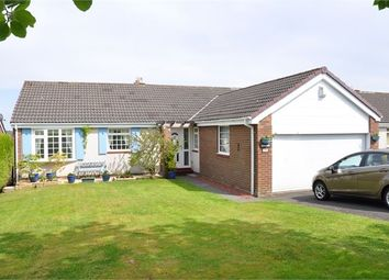 Thumbnail 3 bed detached bungalow for sale in Conniscliffe Road, Hexham