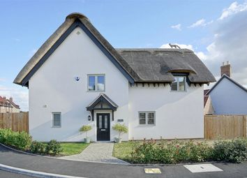 Thumbnail 3 bed detached house for sale in Hill Place, Brington, Huntingdon