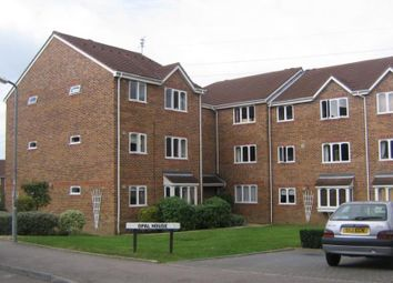 Thumbnail Studio to rent in Percy Gardens, Old Malden, Worcester Park