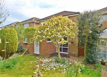 Thumbnail 3 bedroom detached house for sale in Hollam Drive, Fareham