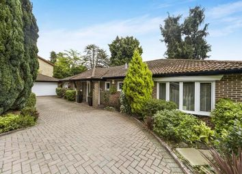 Thumbnail 4 bed bungalow for sale in Dunedin Drive, Caterham, Surrey