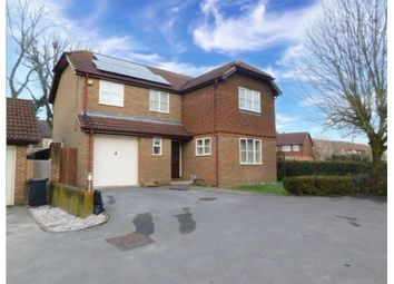 Thumbnail 4 bed detached house to rent in Bergenia Court, West End, Woking
