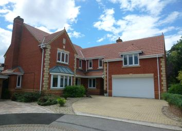 Thumbnail 5 bed detached house for sale in Crabtree Way, Old Basing, Basingstoke