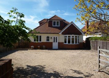 Thumbnail 3 bed bungalow to rent in London Road, Wokingham