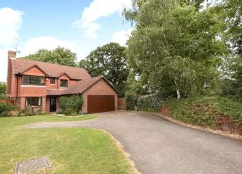 Thumbnail 4 bed detached house to rent in Woodward Close, Winnersh, Wokingham, Berkshire