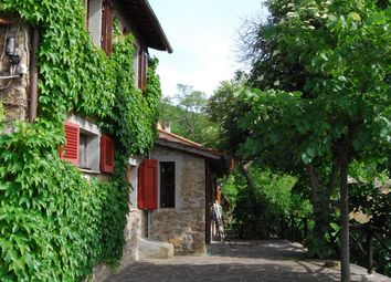 Thumbnail 9 bed farmhouse for sale in Borgo Faulle, Cortona, Tuscany