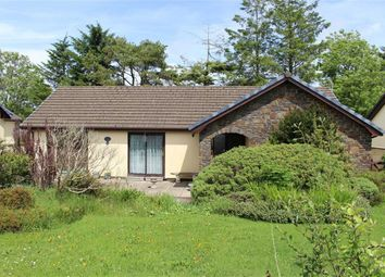 Thumbnail 3 bed detached bungalow for sale in Tair Ffynnon, Whitland, Carmarthenshire