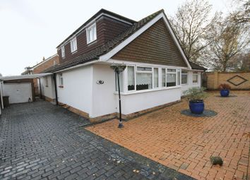 Thumbnail 4 bed bungalow to rent in Birch Tree Drive, Emsworth