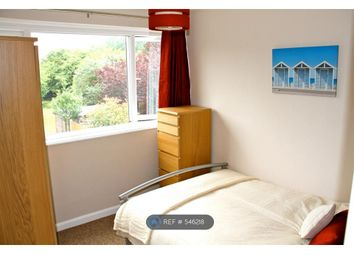 Thumbnail Room to rent in Sunrise Avenue, Chelmsford