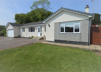 Thumbnail 5 bed detached bungalow for sale in Tor Gardens, East Ogwell, Newton Abbot, Devon.