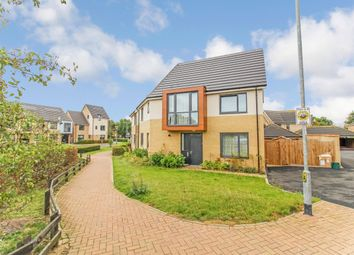 Thumbnail 4 bed detached house to rent in Endeavour Way, Colchester