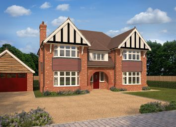 Thumbnail 5 bedroom detached house for sale in The Brambles, Dry Street, Basildon, Essex