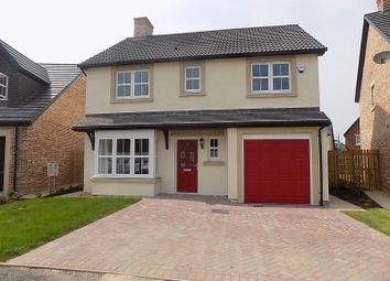 Thumbnail 4 bed semi-detached house to rent in Eagle Way, Houghton, Carlisle