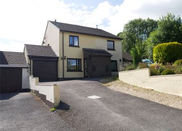Thumbnail 2 bed semi-detached house for sale in Canoldre, Lampeter Velfrey, Narberth
