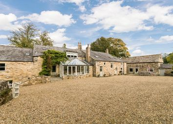 Thumbnail 5 bed farmhouse for sale in Hole House, Red Peth, Haltwhistle, Northumberland