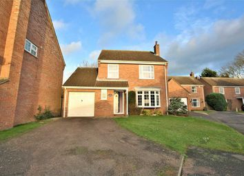 Thumbnail 4 bed detached house to rent in Hallwyck Gardens, Newmarket