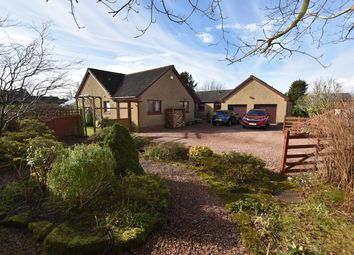 Thumbnail 4 bed detached bungalow for sale in Wester Balgedie, Kinross