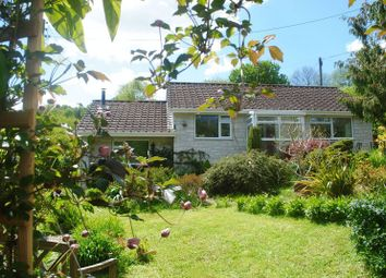Thumbnail 3 bed detached house for sale in Churchill, Axminster