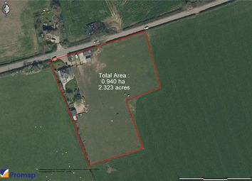 Thumbnail 3 bed equestrian property for sale in Clifton Maybank, Yeovil, Somerset