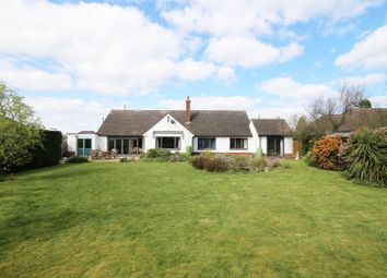 Thumbnail 4 bed detached bungalow for sale in Mayfair, Tiverton