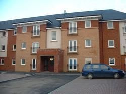 Thumbnail 2 bedroom flat to rent in Broad Cairn Court, Motherwell