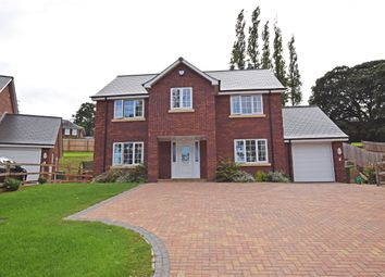 Thumbnail 4 bedroom detached house to rent in Pinn Hill, Exeter, Devon