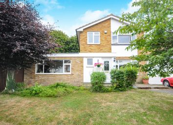Thumbnail 4 bedroom detached house for sale in Riffhams Drive, Great Baddow, Chelmsford