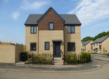 Thumbnail 3 bed semi-detached house to rent in Isinglass Drive, Edlington, Doncaster