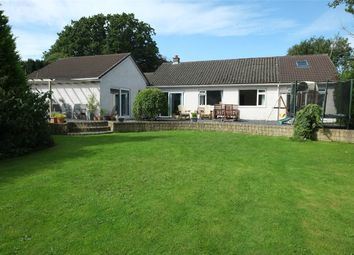 Thumbnail 4 bed detached bungalow for sale in White Wings, Lingmell, Seascale, Cumbria