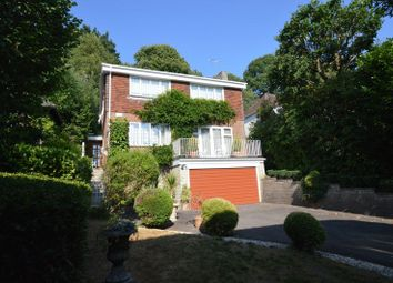 Thumbnail 4 bed detached house for sale in The Avenue, Haslemere