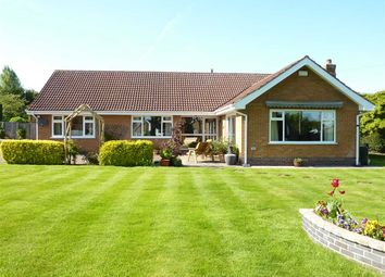 Thumbnail 3 bed detached bungalow for sale in Mill View, Waltham, Grimsby