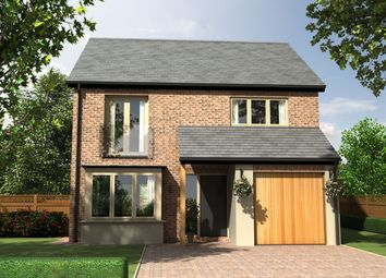 Thumbnail 4 bedroom detached house for sale in The Primrose, Morwick Road, Warkworth, Northumberland