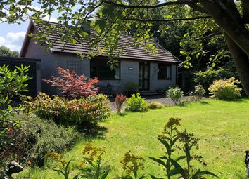 Thumbnail 2 bed detached bungalow for sale in Cilcennin, Nr. Aberaeron