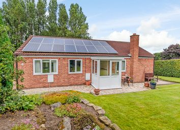 Thumbnail 3 bed detached bungalow for sale in Shafton Hall Drive, Barnsley