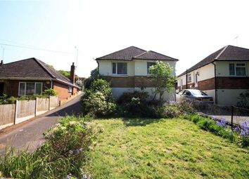 Thumbnail 2 bed detached bungalow to rent in Moorside Road, Bournemouth