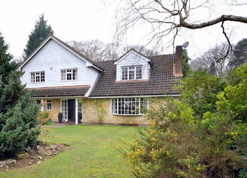 Thumbnail 4 bed detached house to rent in Ince Road, Burwood Park, Walton On Thames