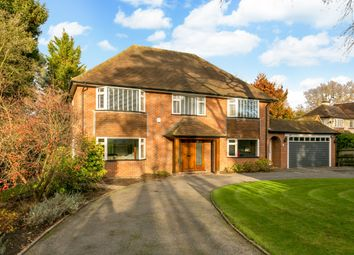 Thumbnail 4 bed property to rent in Grove Road, Beaconsfield