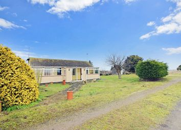 Thumbnail 3 bed bungalow for sale in Brickmakers Arms Lane, Doddington, March