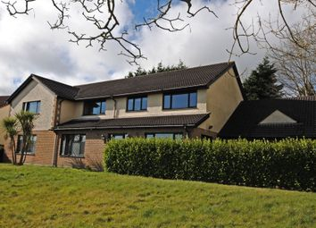 Thumbnail 5 bed detached house for sale in Farmhill Lane, Douglas, Isle Of Man